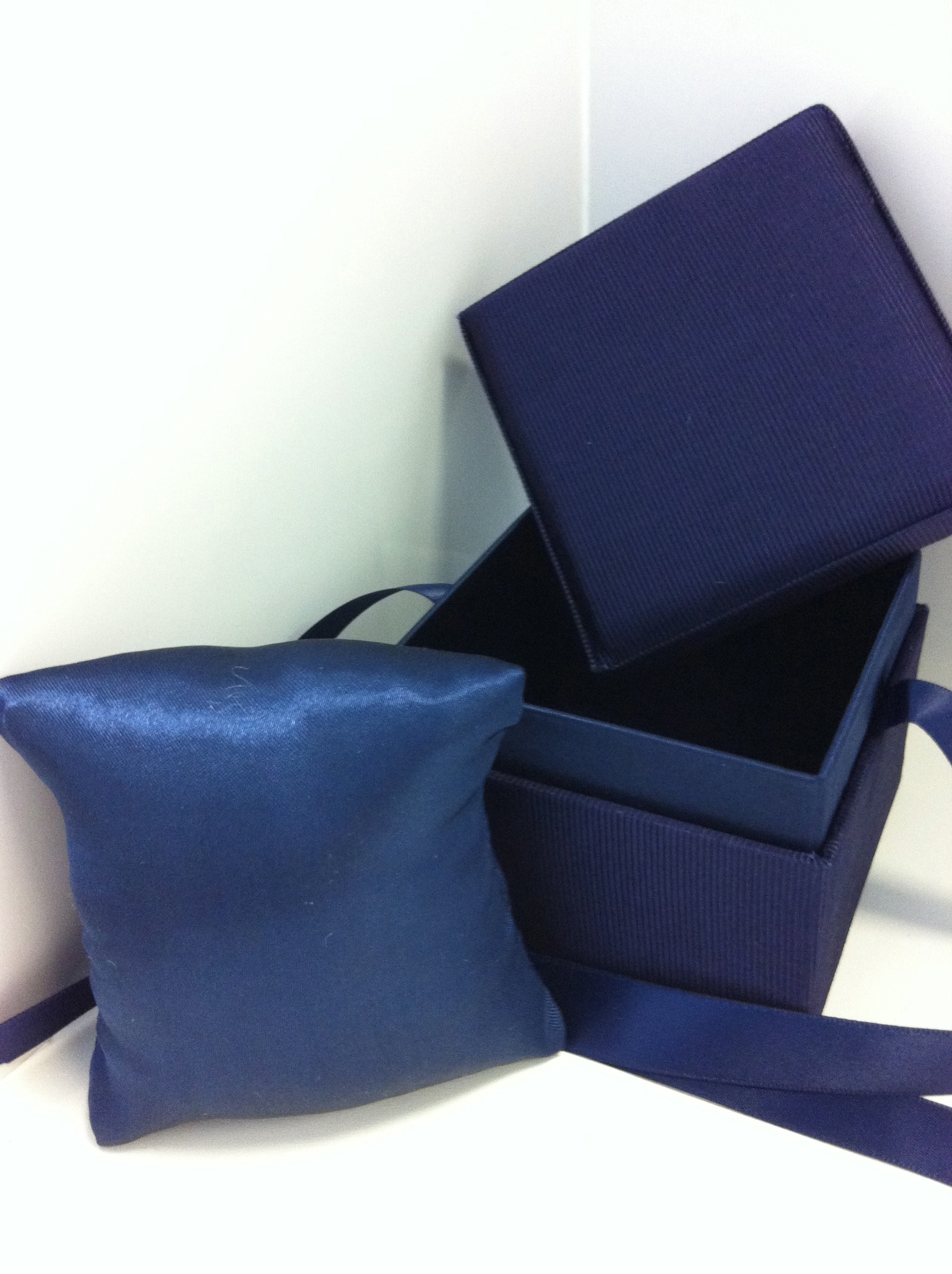 Blue Ribbon Bangle or Watch Box