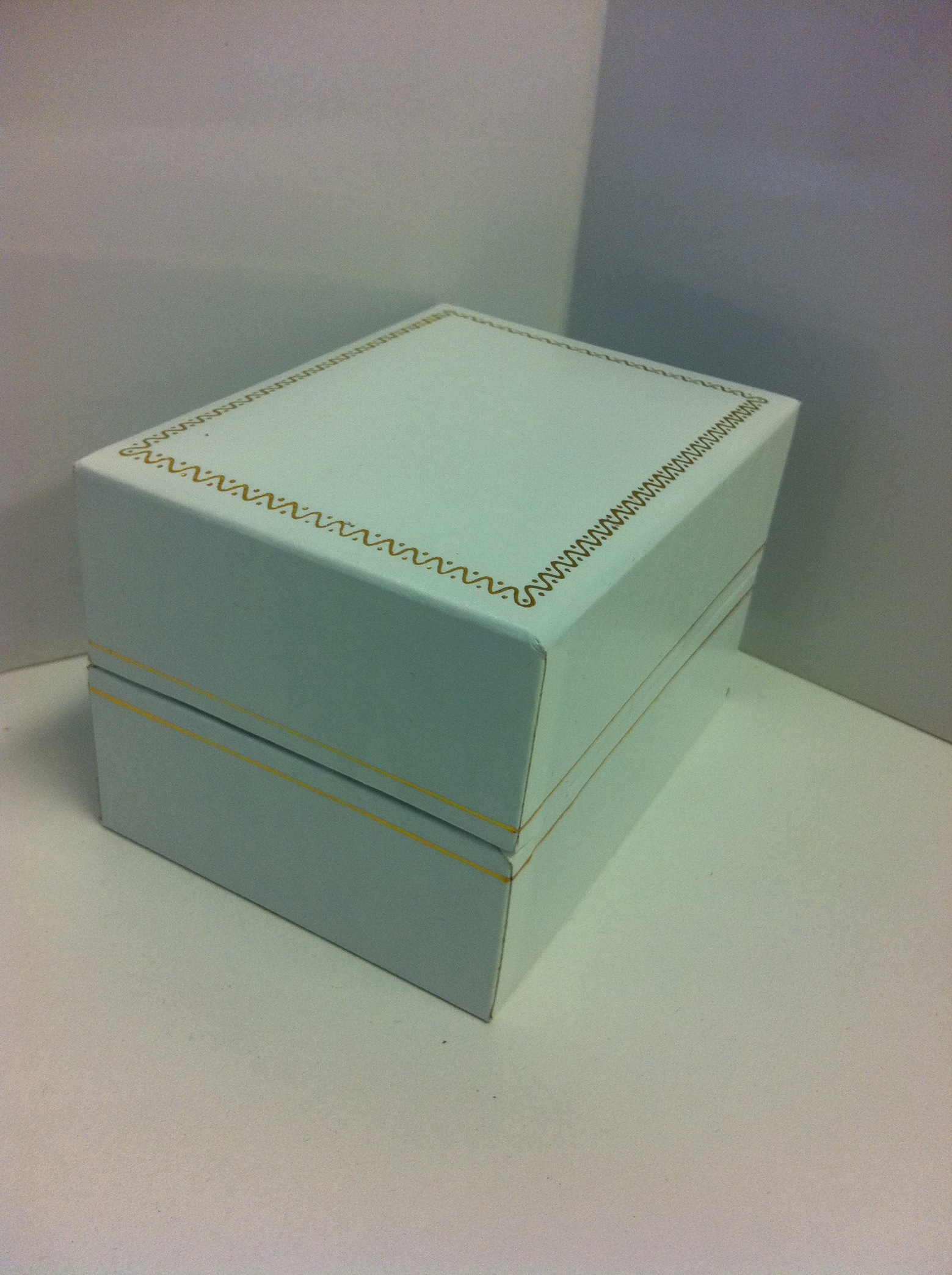 White Watch Box with Gold Trim