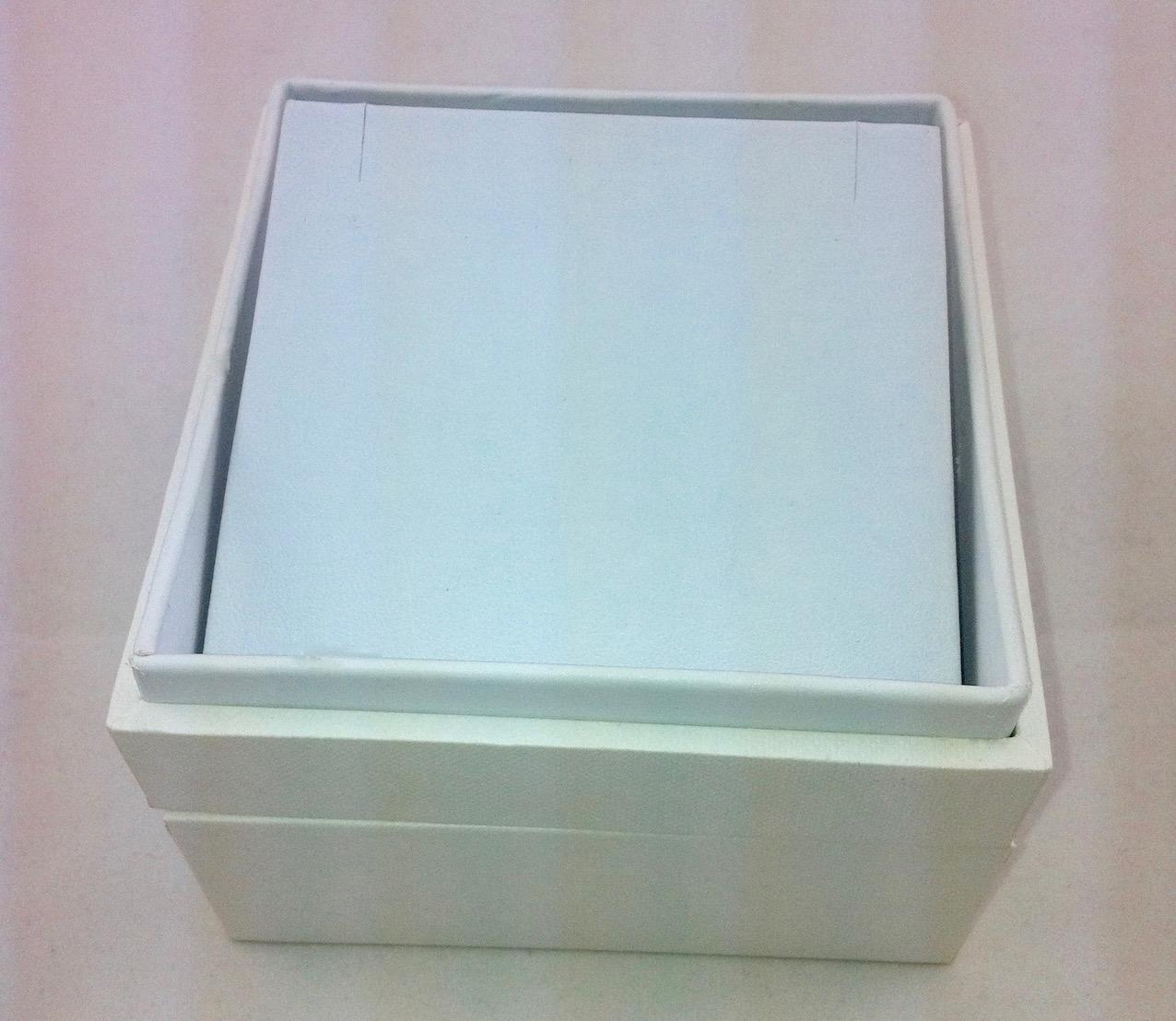 X Large white earring box