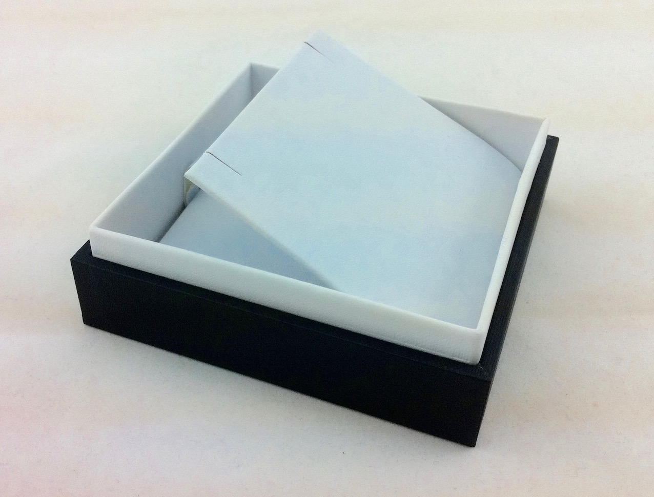 B&W x large earring box